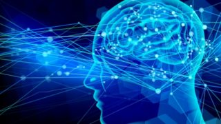 脳の苦痛系と報酬系